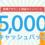 【bitFlyer】新規アカウント開設で最大5,000円キャッシュバックキャンペーン!管理人の損益履歴も見せちゃいます